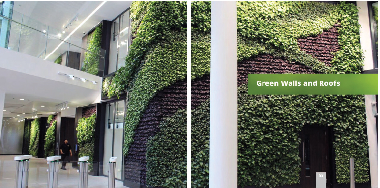 Green walls roofs